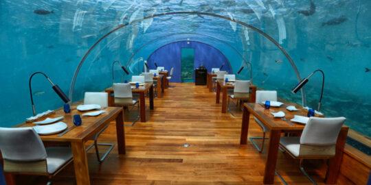 Culinary delights in maldives  Ithaa undersea restaurant