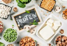 The importance of protein in your daily diet| Cover Image