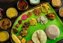 Popular food items of South-India| Feature image